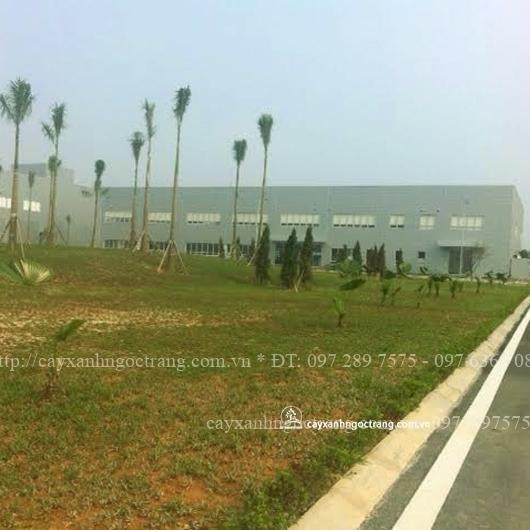 Cảnh quan nhà máy Hansol Thái Nguyên  (khi mới hoàn thành)