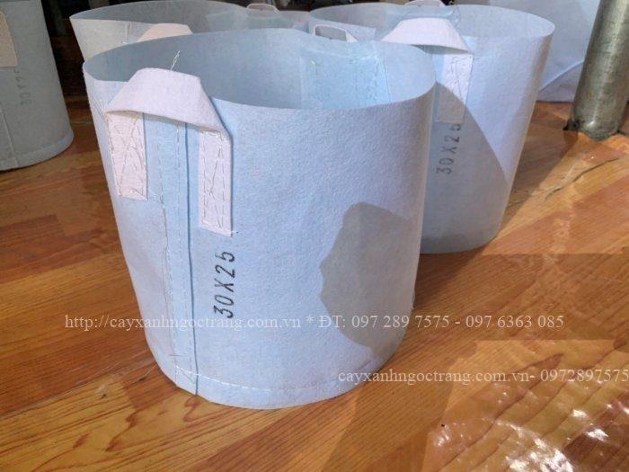 Túi vải trồng cây do công ty Cây xanh Ngọc Trang sản xuất